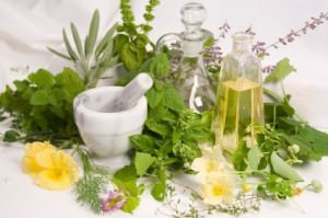 How To Make Your Own Basil Essential Oil